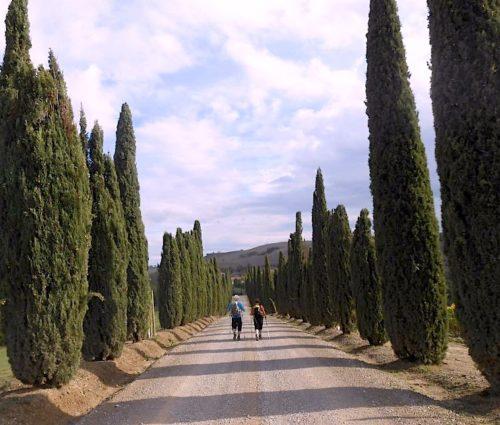 Between Cypress
